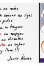 AMPHORA_etiqueta_revers